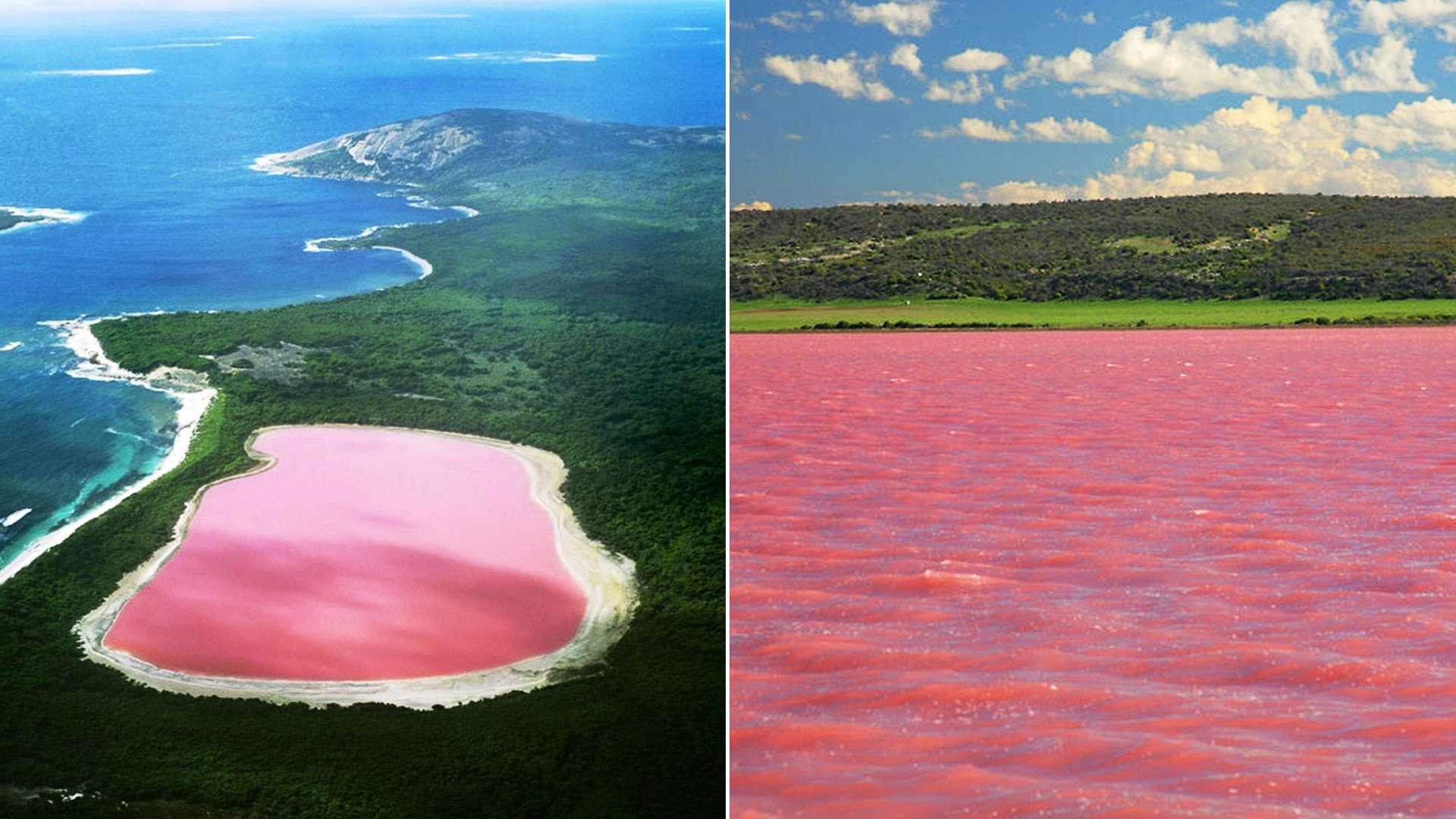 Hồ nước mặn màu hồng Lake Hillier nổi tiếng ở bang Tây Úc