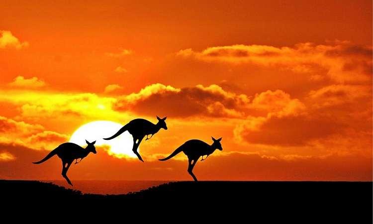 Nước Úc có gì đặc biệt