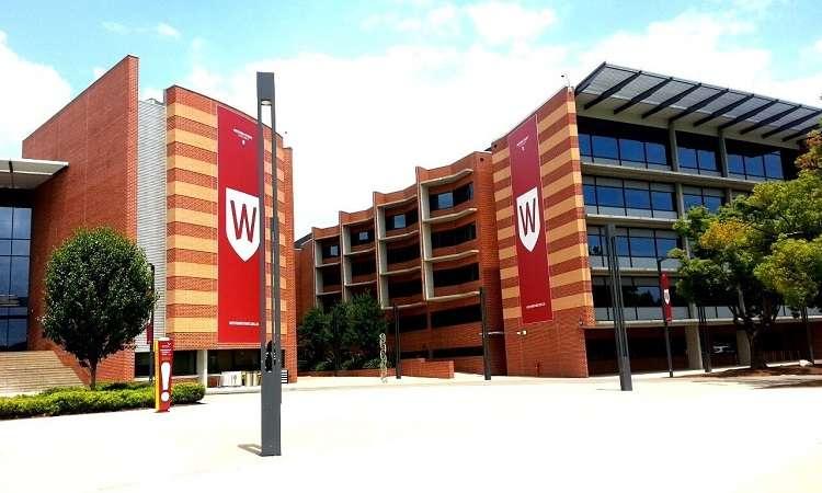 Học bổng Cử nhân Ưu túĐại học Western Sydney, Úc 2017-2018