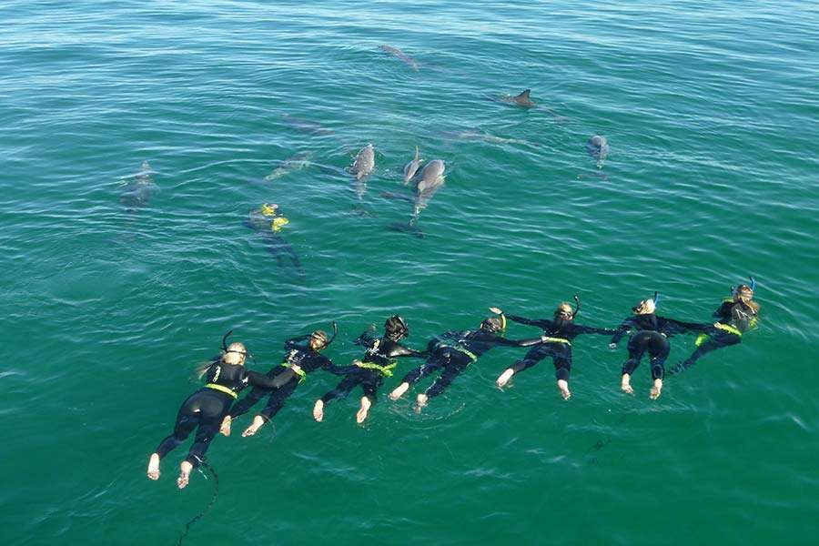 Khu sinh thái biển Rockingham, Perth