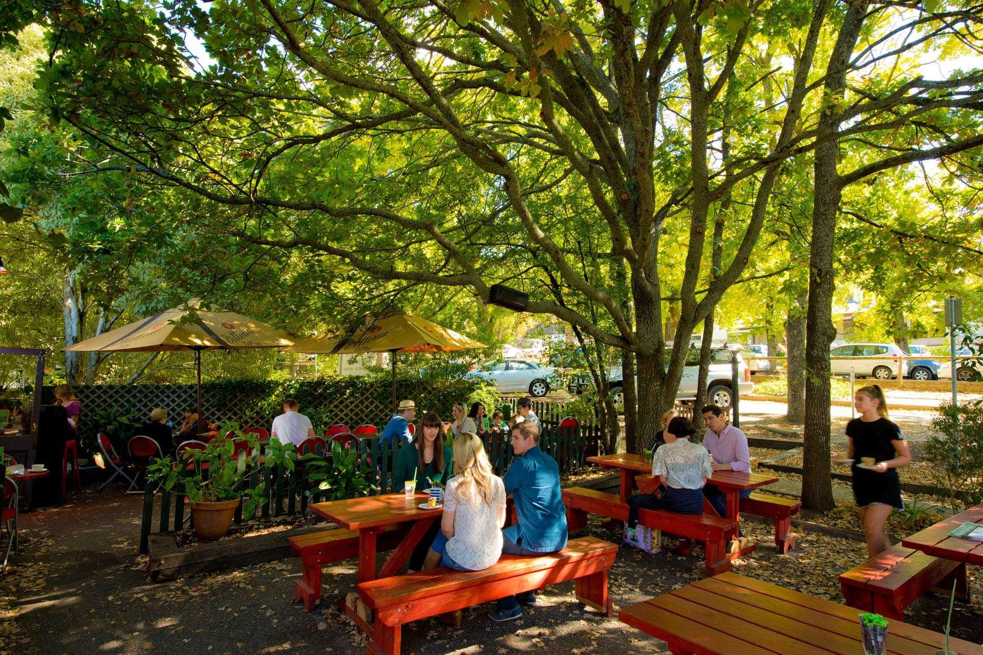 Mùa xuân ở Adelaideràn ngập sắc màu