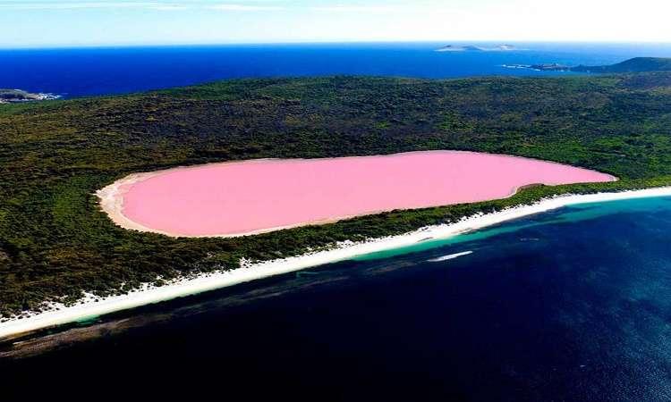 Ai cũng muốn trải nghiệm hồ nước màu hồng Hillier ở Úc đầy bí ẩn