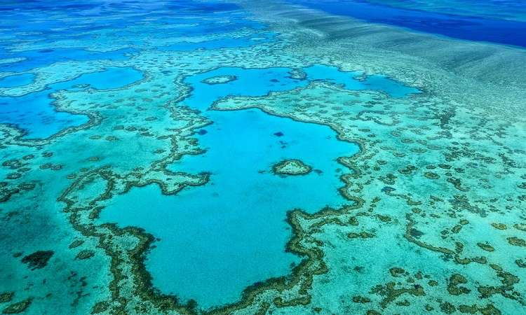 Rạn san hô Great Barrier Reef từ trên cao