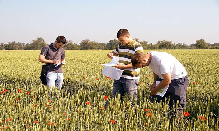 Cơ hội nghề nghiệp lương cao sau khi du học Úc ngành nông nghiệp