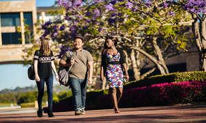 Đại học Bond University Australia: Học phí, điều kiện, ngành học