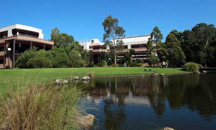 Điều kiện, học phí, ngành họcĐại học University of Wollongong
