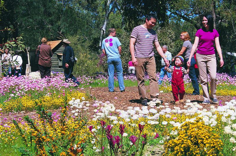 Công viên Kings là địa điểm lý tưởng dành cho gia đình