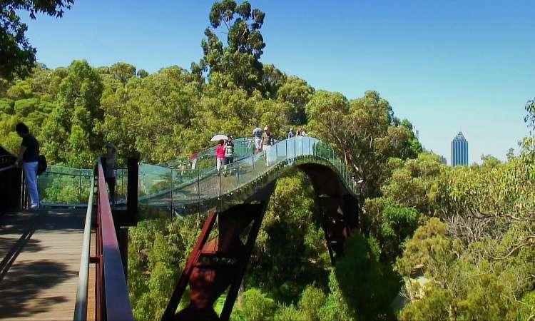 Du lịch công viên Kings ở Perth Úc