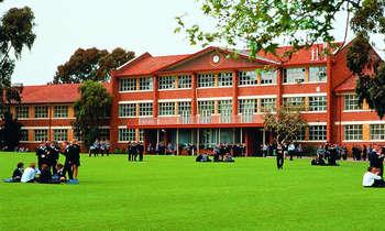 Các trường trung học ở Adelaide Úc nhiều phụ huynh Việt chọn
