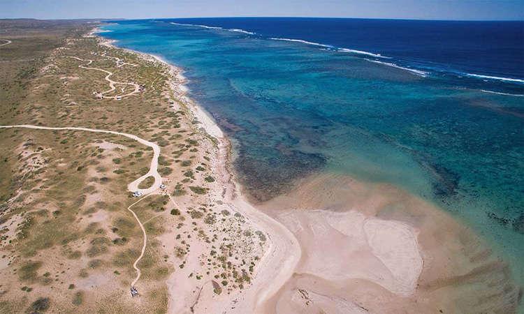 Đến Úc phải ghé biển Ningaloo beach Australia có rặng ran hô nổi tiếng
