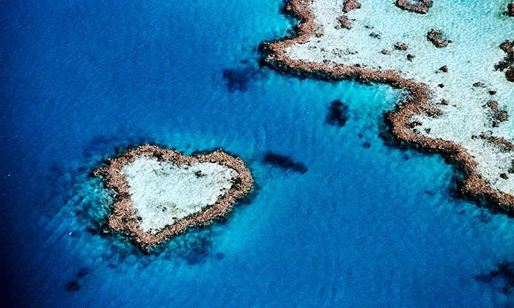 Rặng san hô Heart Reef có hình trái tim độc đáo