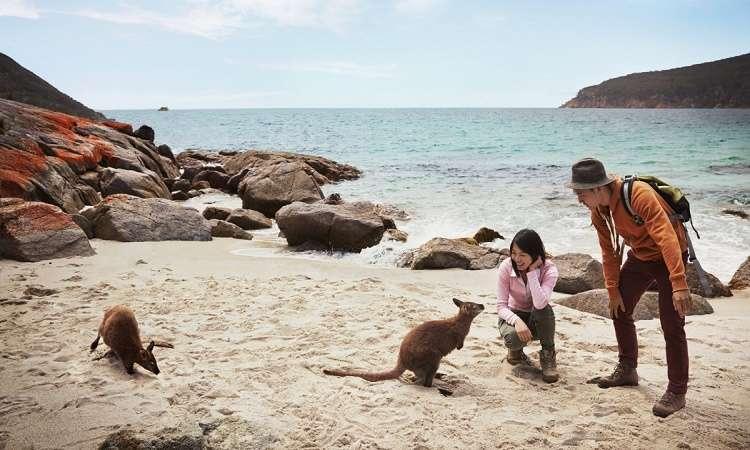 Những chú ý để du lịch Úc an toàn cần bỏ túi