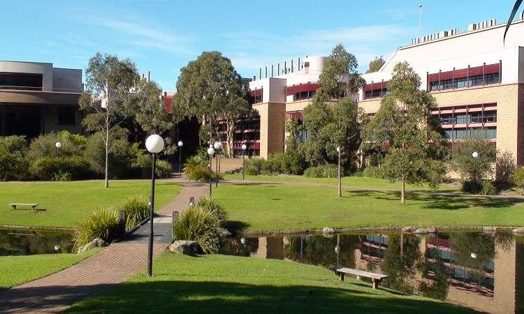 Kinh nghiệm du học ở Wollongong Úc không phải ai cũng rõ