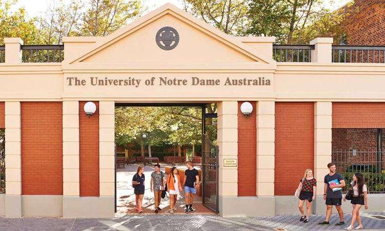 Trường Đại Học Notre Dame Australia Điều kiện, học phí, chương trình học