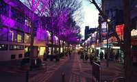 Chi phí sinh hoạt, giá thuê nhà, giải trí ở Hobart Úc bao nhiêu?