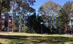Các trường Cao đẳng Úc bang New South Wales và mức học phí phải trả