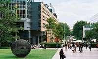 Du học Úc ngành công tác xã hội: Điều kiện, chi phí, trường đào tạo