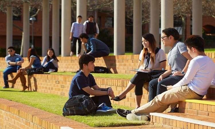 Học dự bị Đại học Curtin Úc: Điều kiện, học phí, các chương trình học