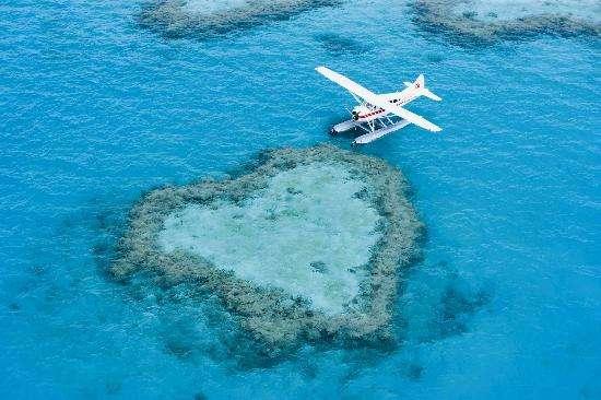 Rạn san hô hình trái tim vô cùng nổi tiếng