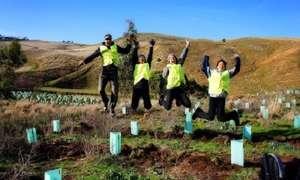 Những lợi ích vàng chỉ có được khi làm tình nguyện viên ở Úc