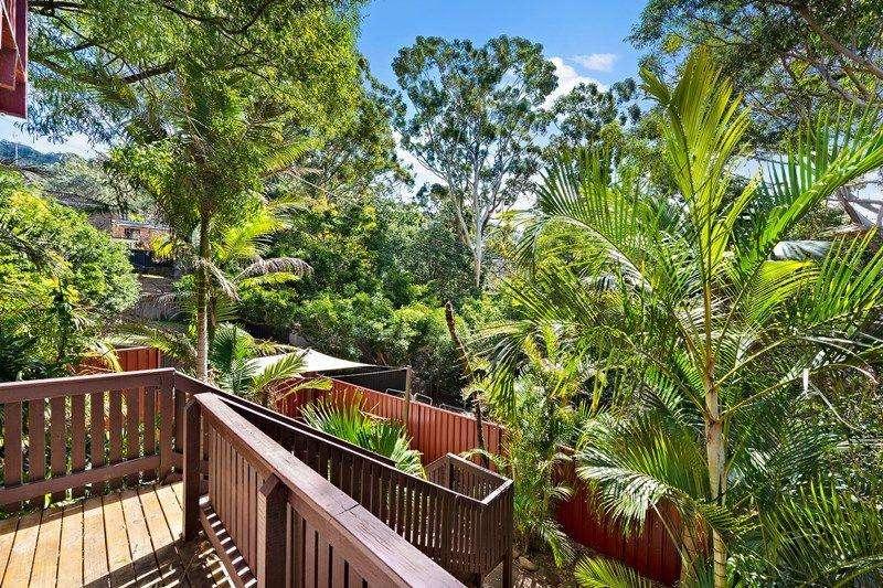 Xung quanh ngôi nhà có nhiều bụi cây tươi xanh như trong một khu rừng