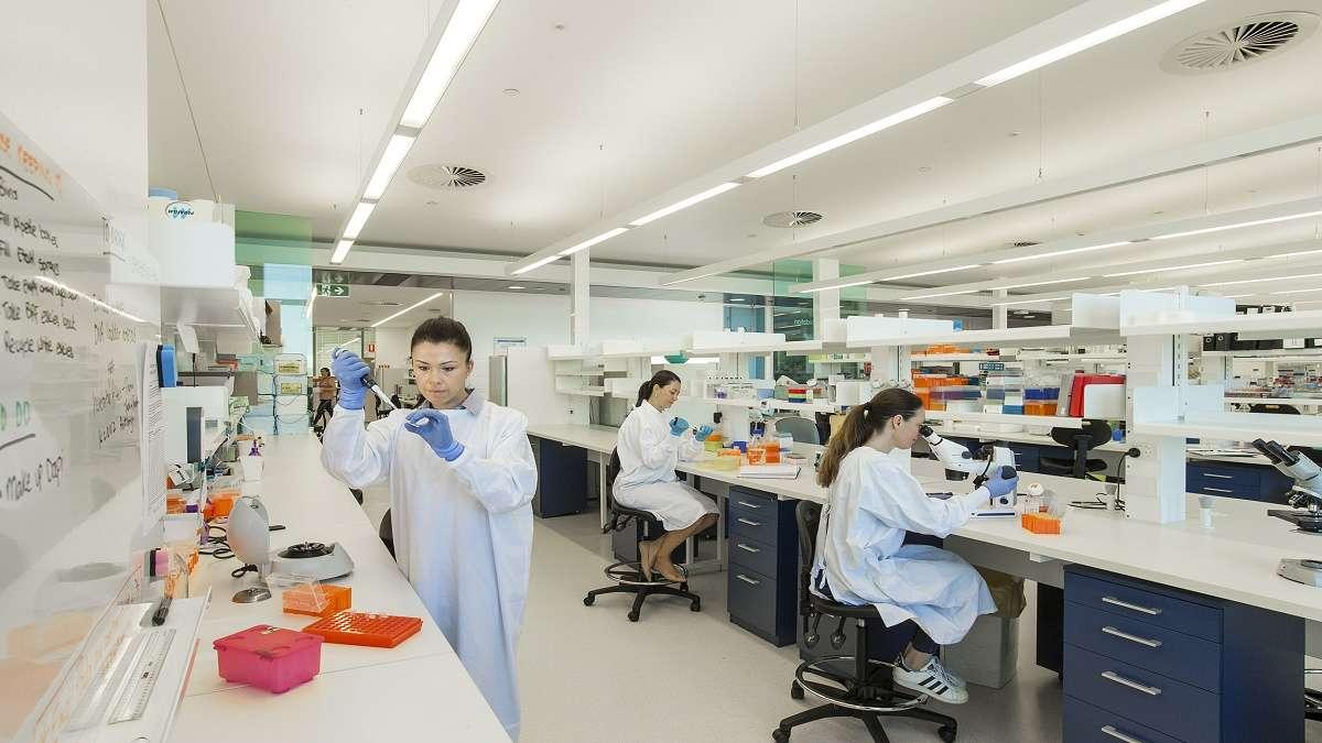 Du học Úc ngành nhãn khoa: Tiêu chuẩn, trường đào tạo